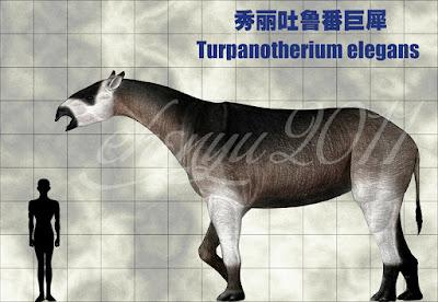 Turpanotherium