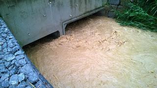 Primeiro teste no Rio Principe na Posse com chuvas intensas de 30 minutos