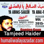 http://www.humaliwalayazadar.com/2015/10/tamjeed-haider-nohay-2016.html