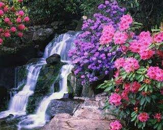 Si has llegado hasta aqu ayer plant tus rosas for Letra jardin prohibido