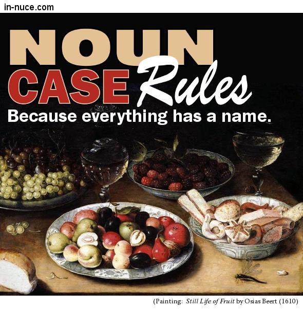 in-nuce.com     noun case rules