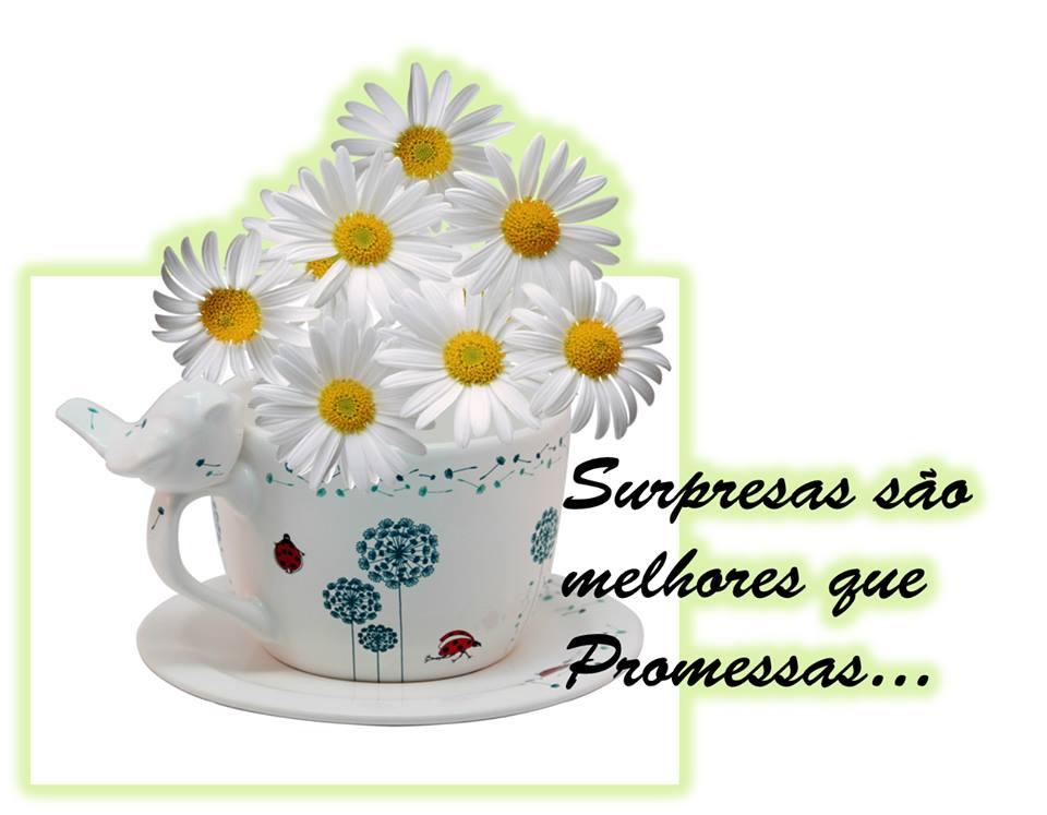 Boas Surpresas Inspiram Felicidade