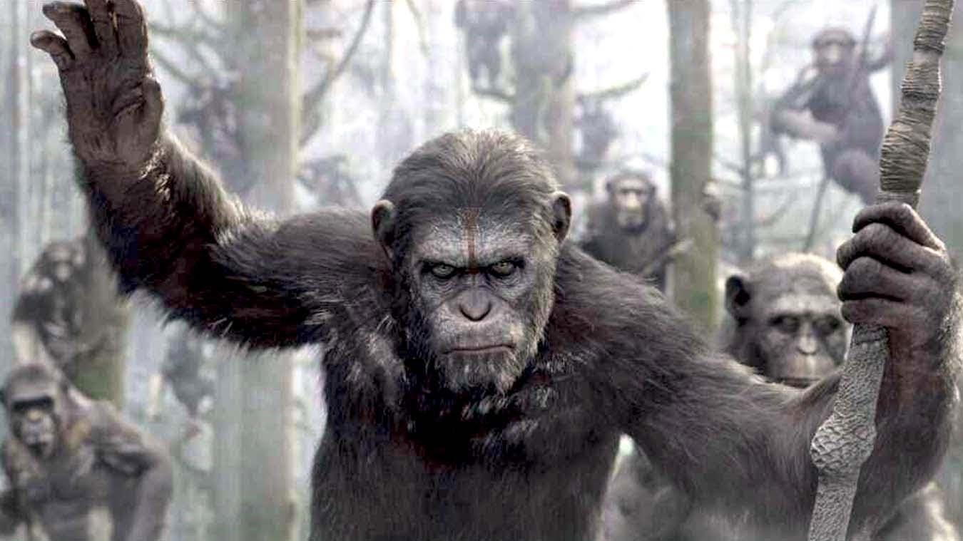 כוכב הקופים: השחר - ביקורת סרט