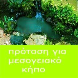 κήπος μεσογειακος