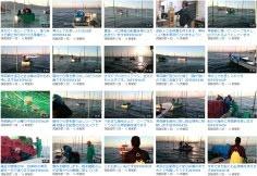平成27年度 熊本海苔種付け
