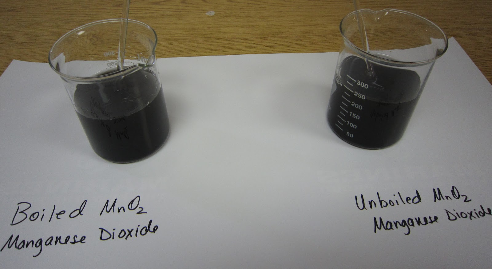 catalase lab View lab report - catalase enzyme lab report from biol 101 at usc catalase enzyme lab report guy guarino abstract enzymes are protein catalyst that speed up the rate of a chemical reaction.