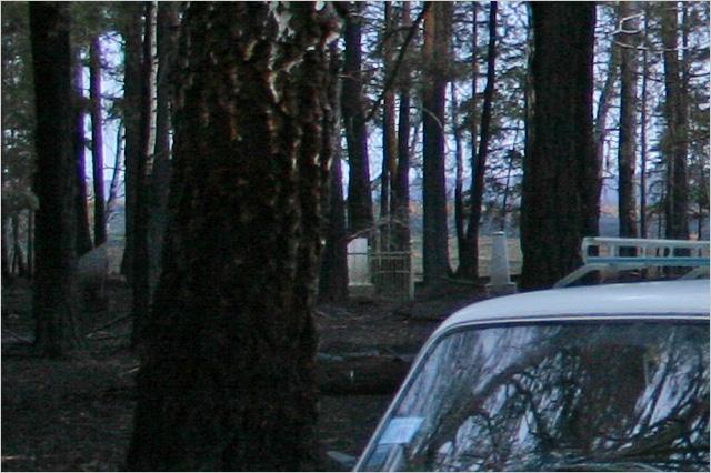 Булзинское подворье, малобулзинская заимка женского Ново-Тихвинского монастыря с церковью(храмом) во имя святого праведного Симеона Верхотурского. Кладбище.