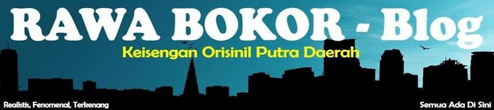 RAWA BOKOR blog