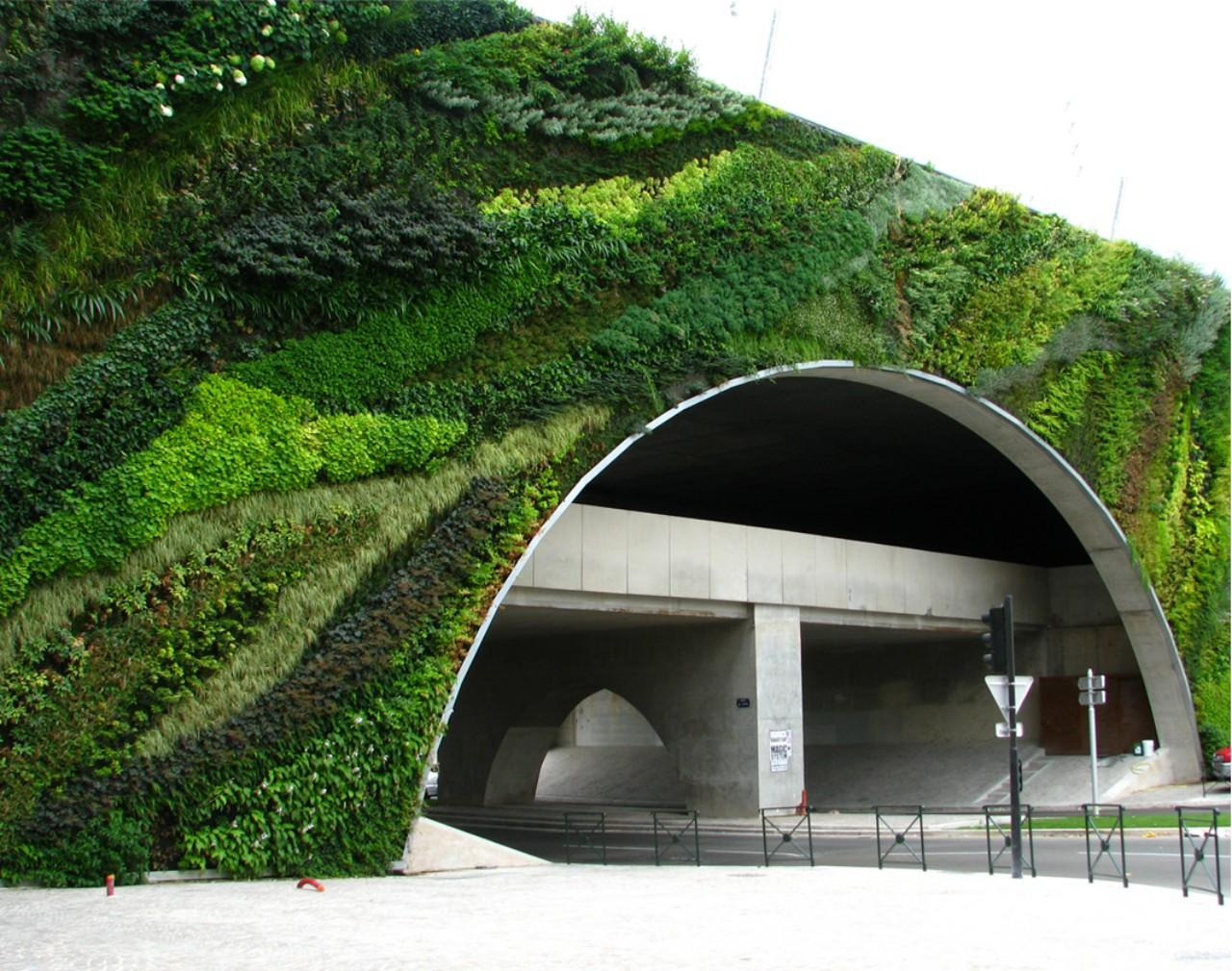 W T Green Living Walls Patrick Blanc
