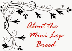 About the breed