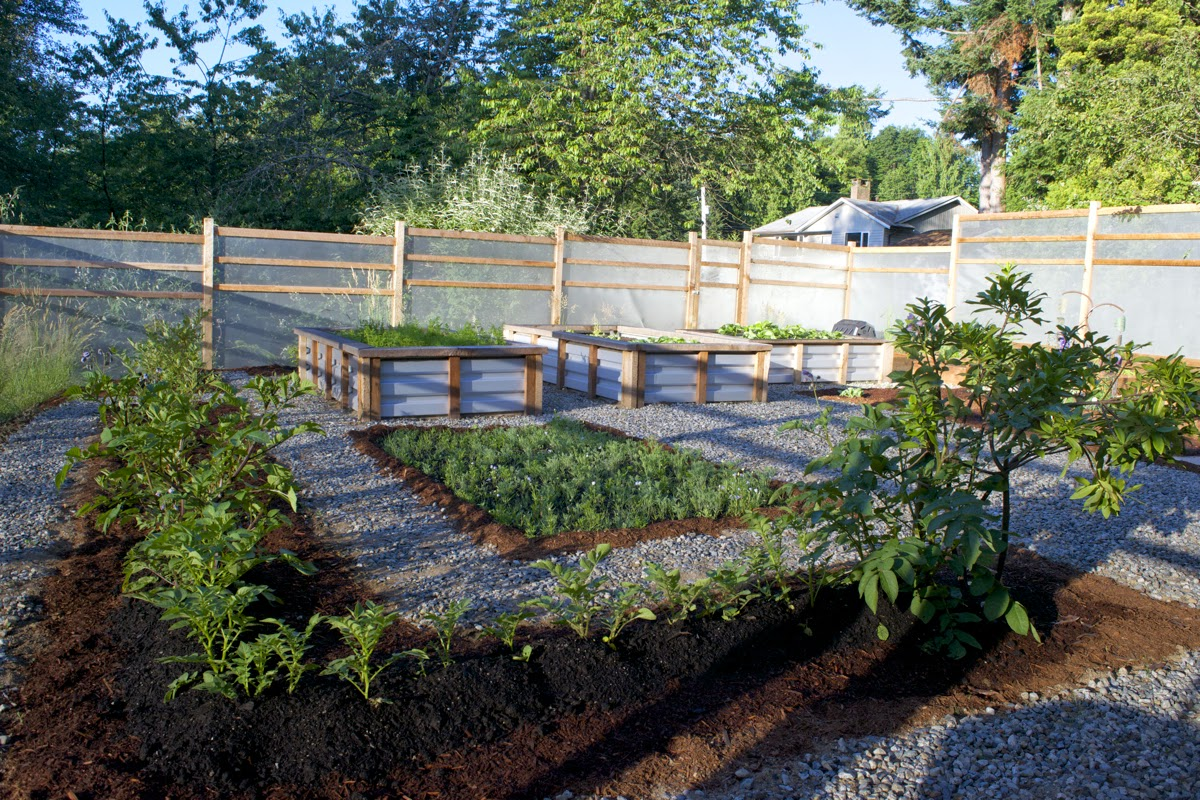 Perforated sheet metal fence, galvanized roofing raised garden beds