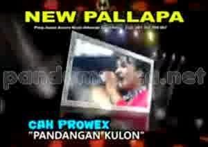 New Pallapa Live Pandangan Kulon