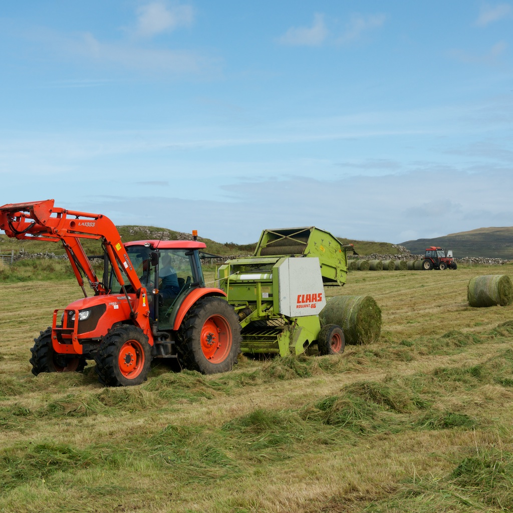 Treshnish Farm Silage In September And Calves Away