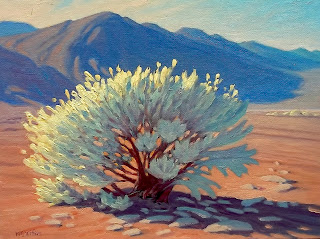 desert original painting, death valley plants