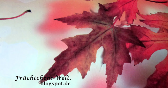 Aufnahme Herbst