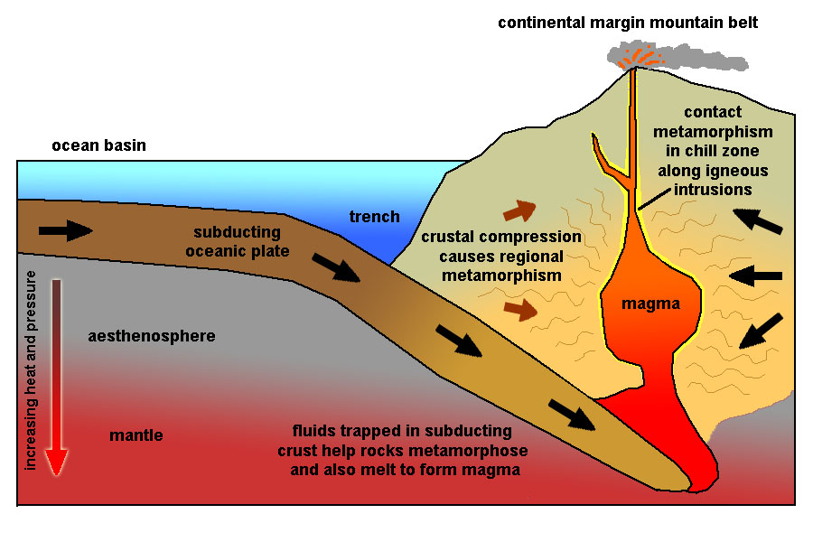 the cycle the relationship between convergence Schematic diagram of the rock cycle displaying the complex interactions between molten rock (magma), the three basic rock types, sediment, and the various processes that influence formation.