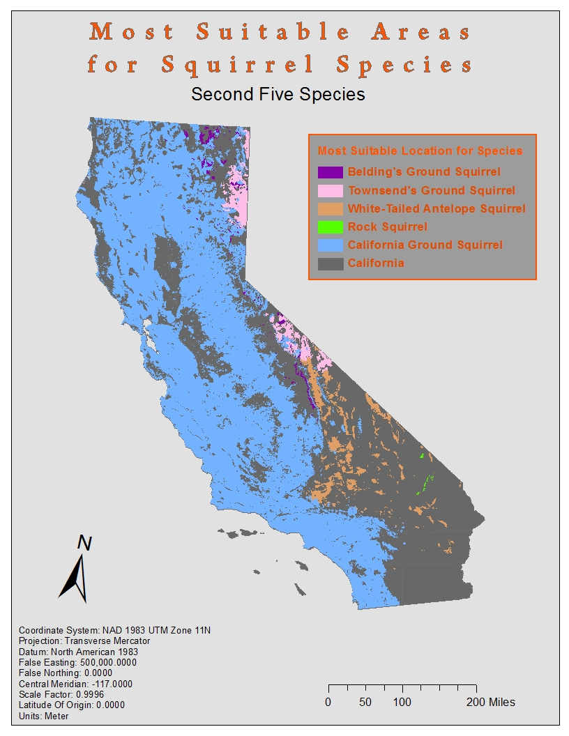 species of squirrels living in the southern inland portion of california and the northern coastal sierra species this brings us to the conclusion that