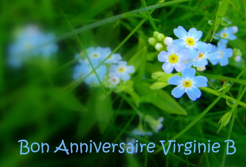 Randonnez Vous Dans Ce Blog Bon Anniversaire Virginie
