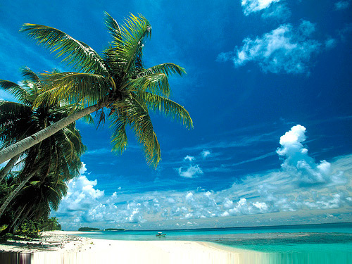 Situated amid the Micronesian Islands of the Pacific Ocean, Bikini Atoll is ...