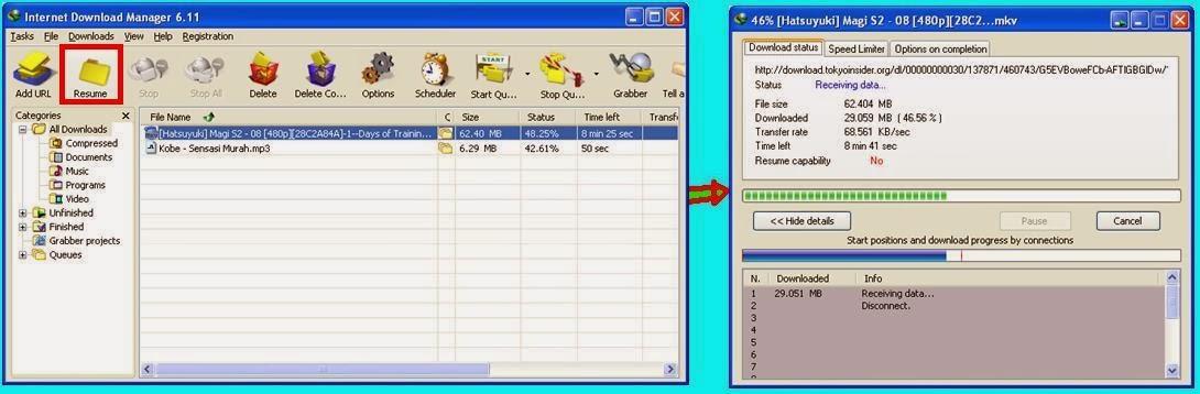 cara melanjutkan resume file karena server error