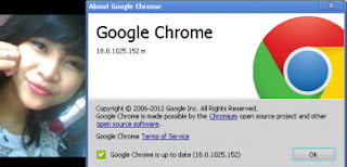 Google Chrome 18.0.1025.152 Stable Offline Installer - Andraji