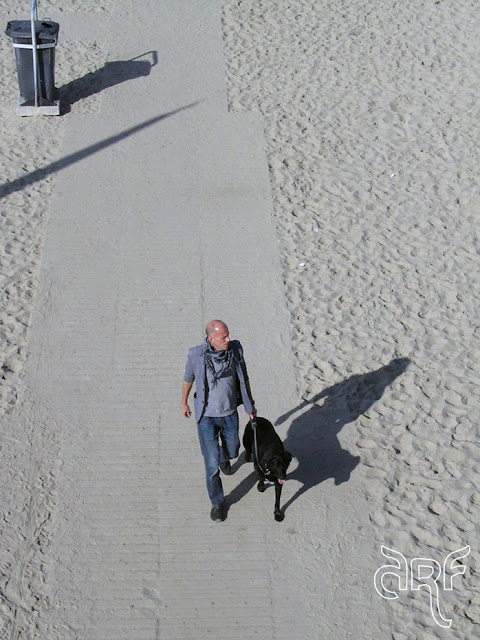 man with dog on the beach