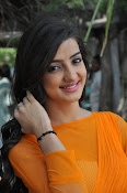Loveleen Sasan photos at Ra Rammani launch-thumbnail-12