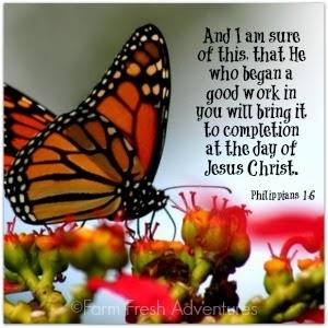 Philippians 1:6 verse