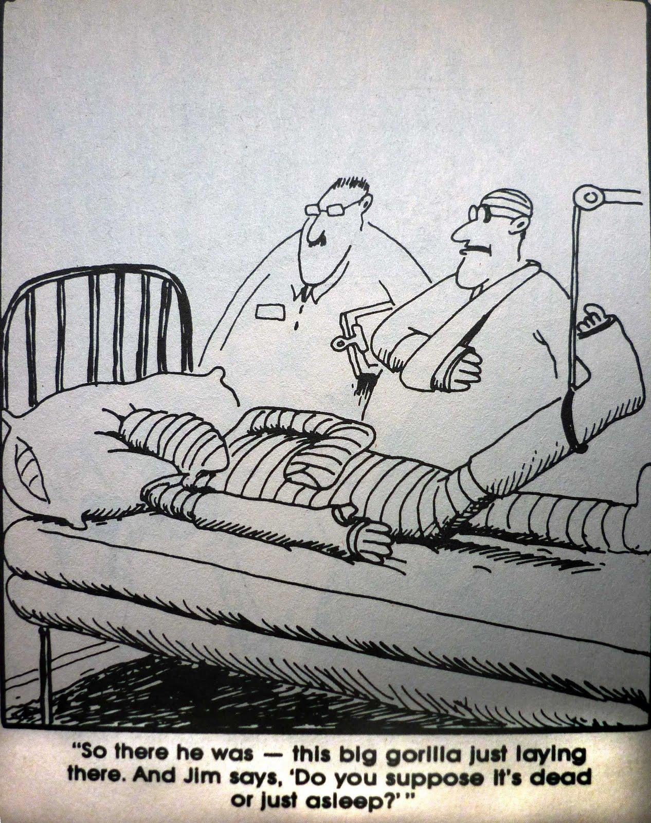 far side cartoons. Black Bedroom Furniture Sets. Home Design Ideas