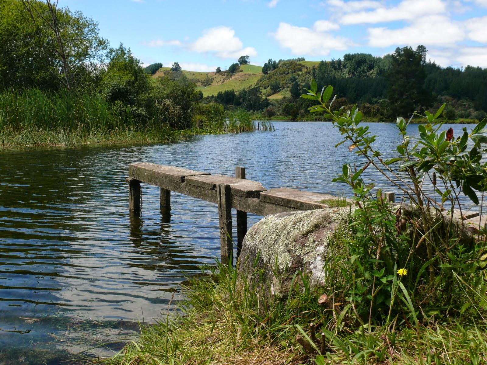 Waikato river trail