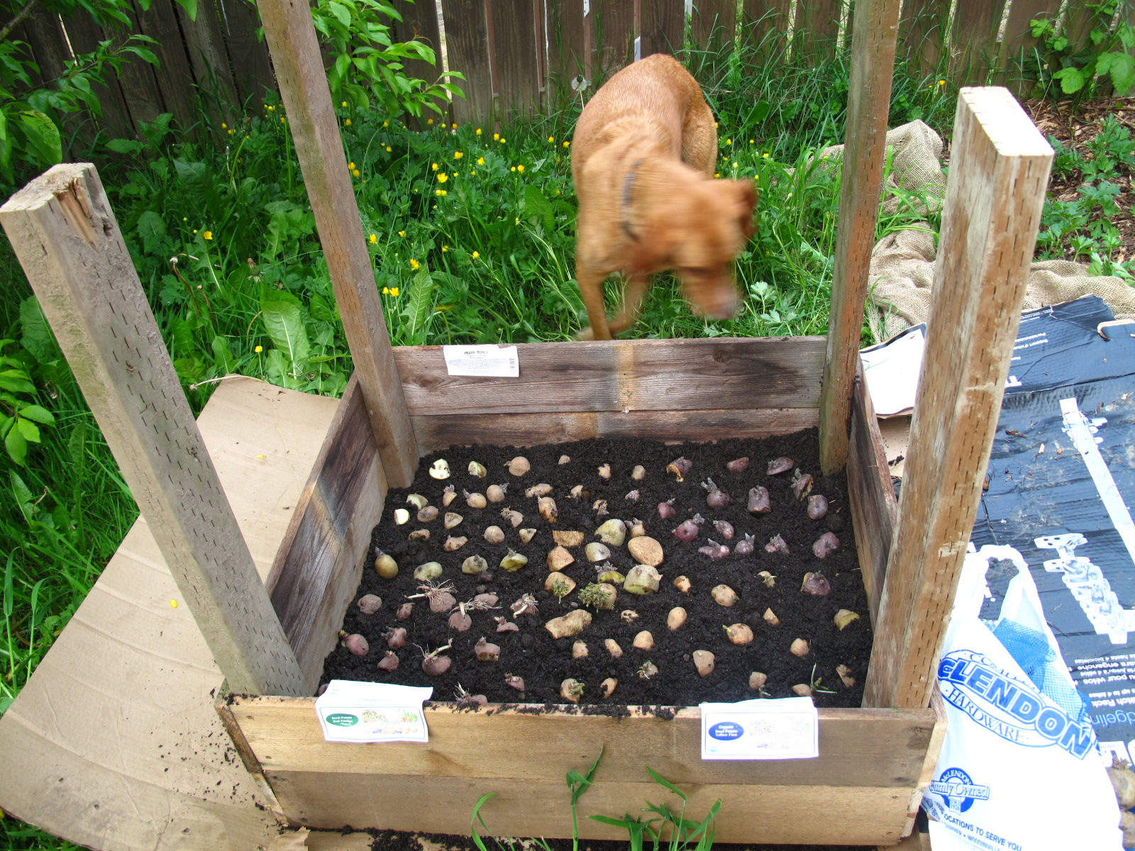 how to build a raised potato box