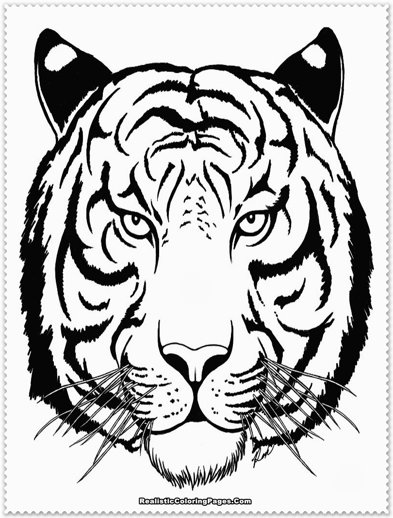 tiger head coloring page