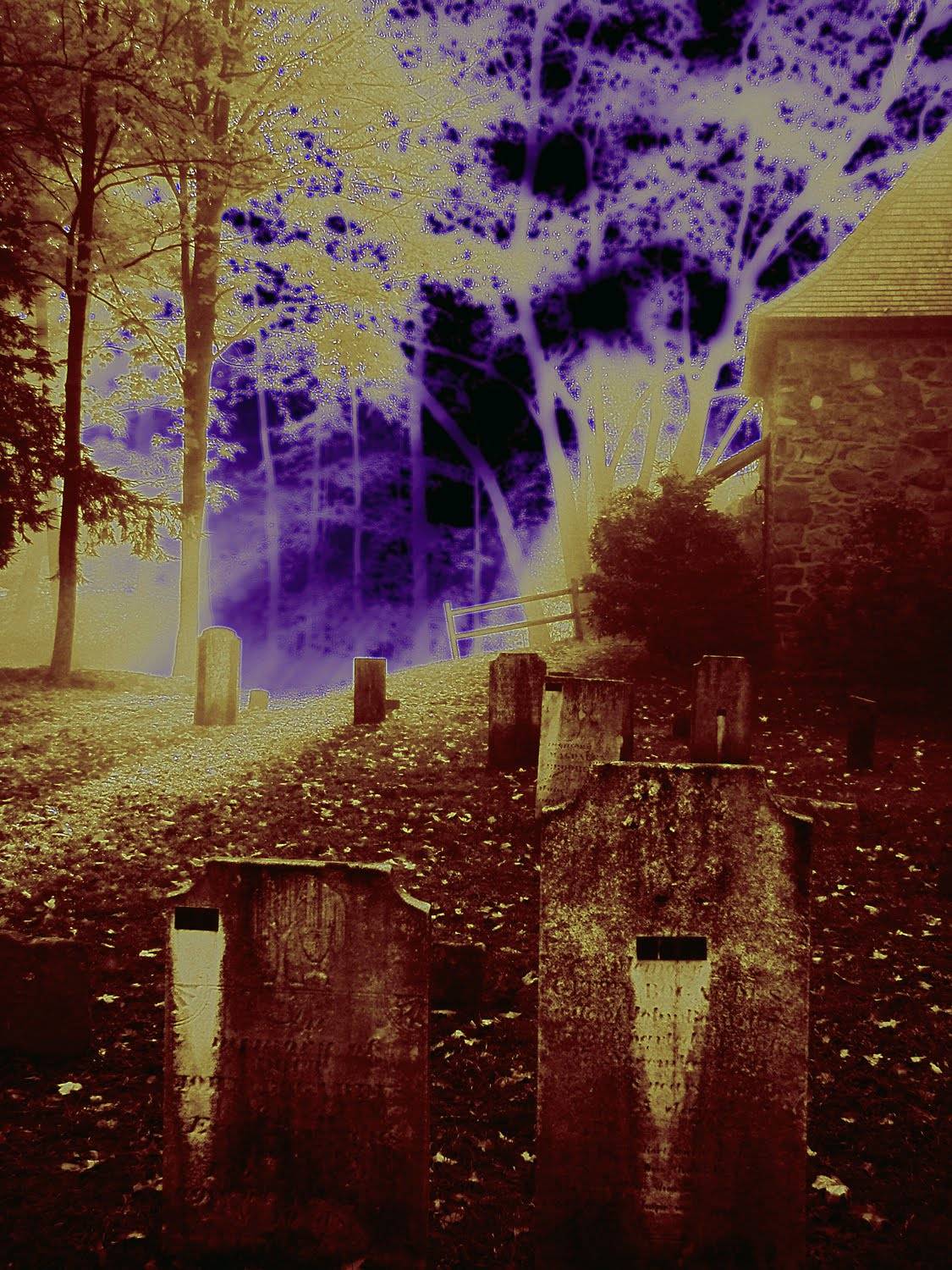 halloween history Halloween has its history in ancient times and in modern times, from the celts to the irish.
