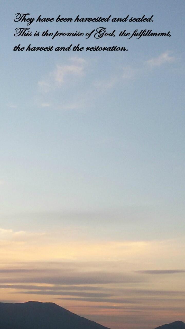 Shincheonji Shines so Brightly: May 2015