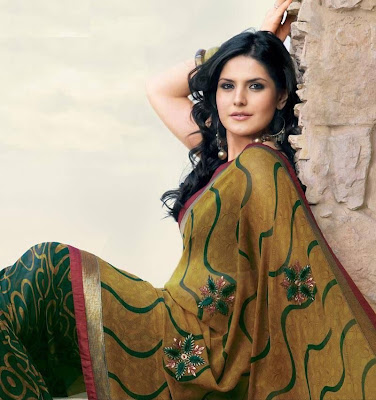 zarine khan in saree photo gallery