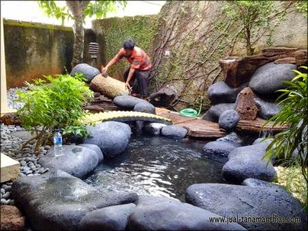 Desain Kolam Minimalis Terbaru | Project Pembuatan Kolam Di Tangerang
