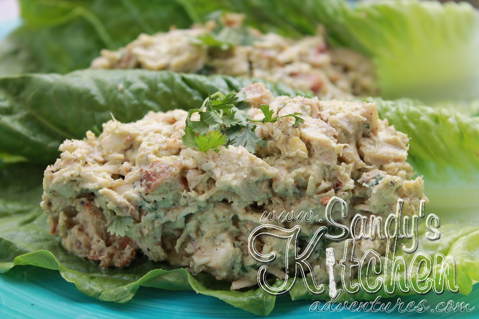 Avocado Chicken Salad | Sandy's Kitchen