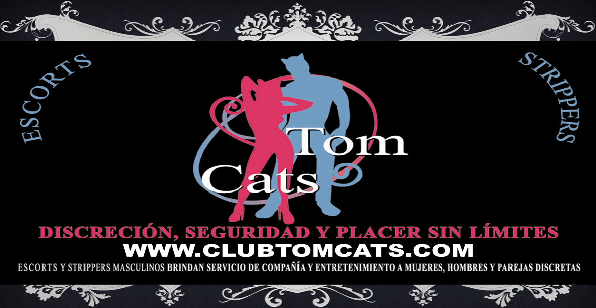 CLUB TOM CATS