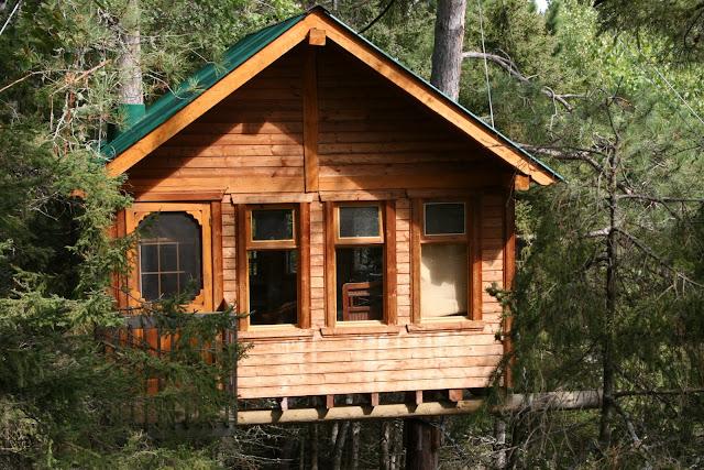 large tree house designs