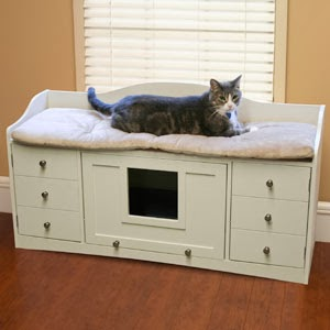 Cat Litter Box Cabinet Is Gaining Popularity