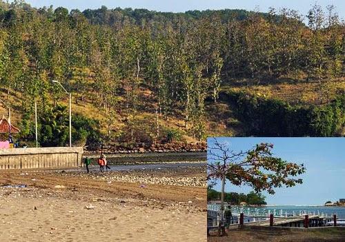 Pantai Ayah (Pantai Logending) Kebumen