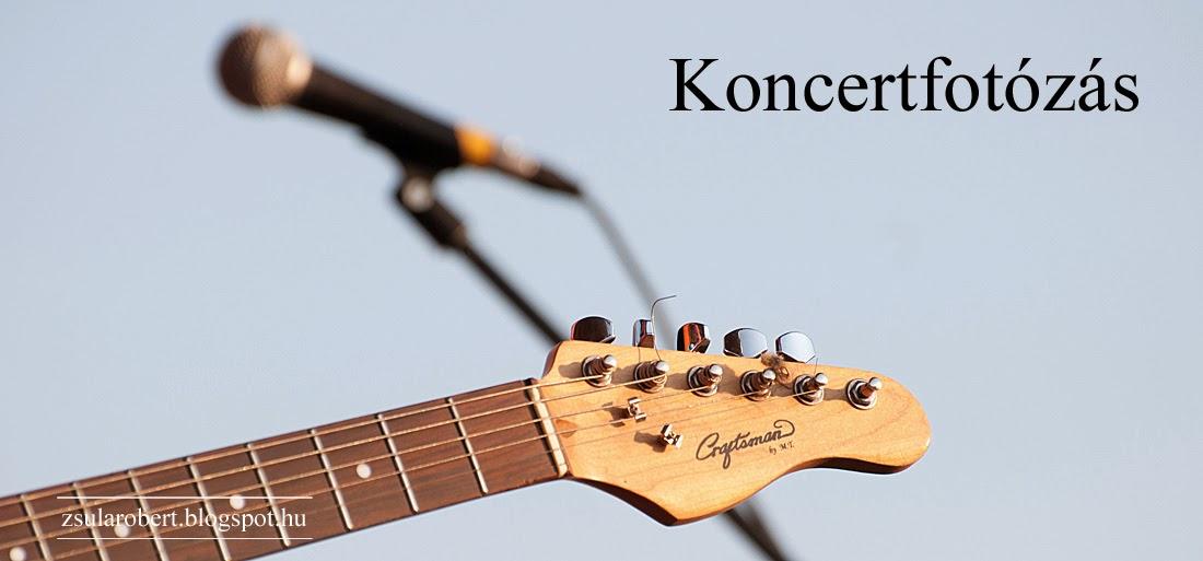 Koncertfotózás