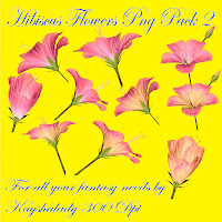 Hibiscus Flowers PNG tubes