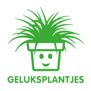 Geluksplant