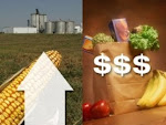 The Future of Food Prices: What Will Food Cost in 2015?