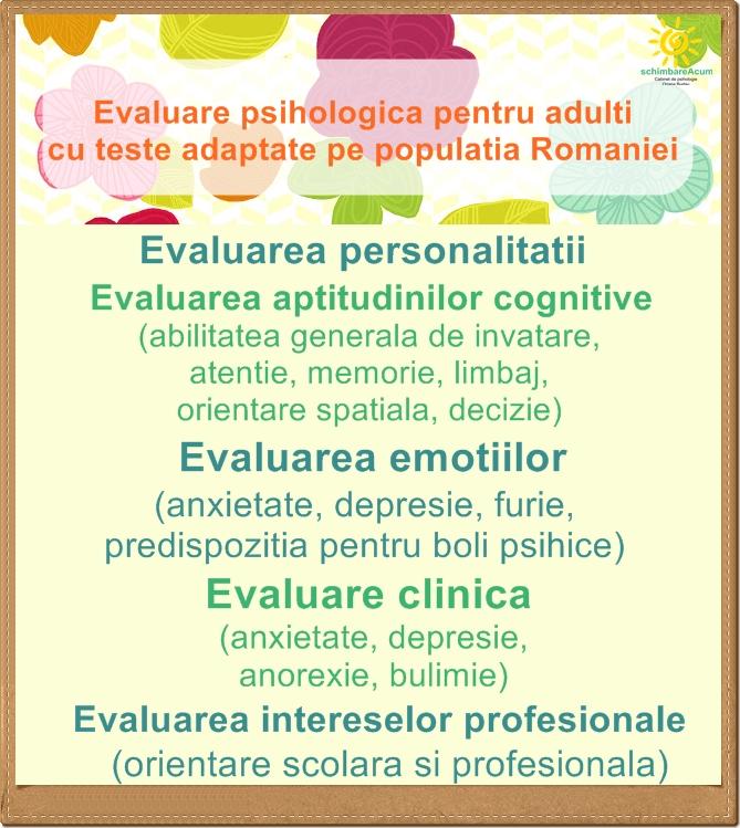 Psiholog Ozana Budau - SchimbareAcum: Ce presupune evaluarea ...