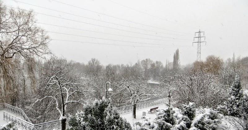 Bambus Gartenmobel Garten : Düsseldorf und Umgebung in Bildern Winterimpressionen aus