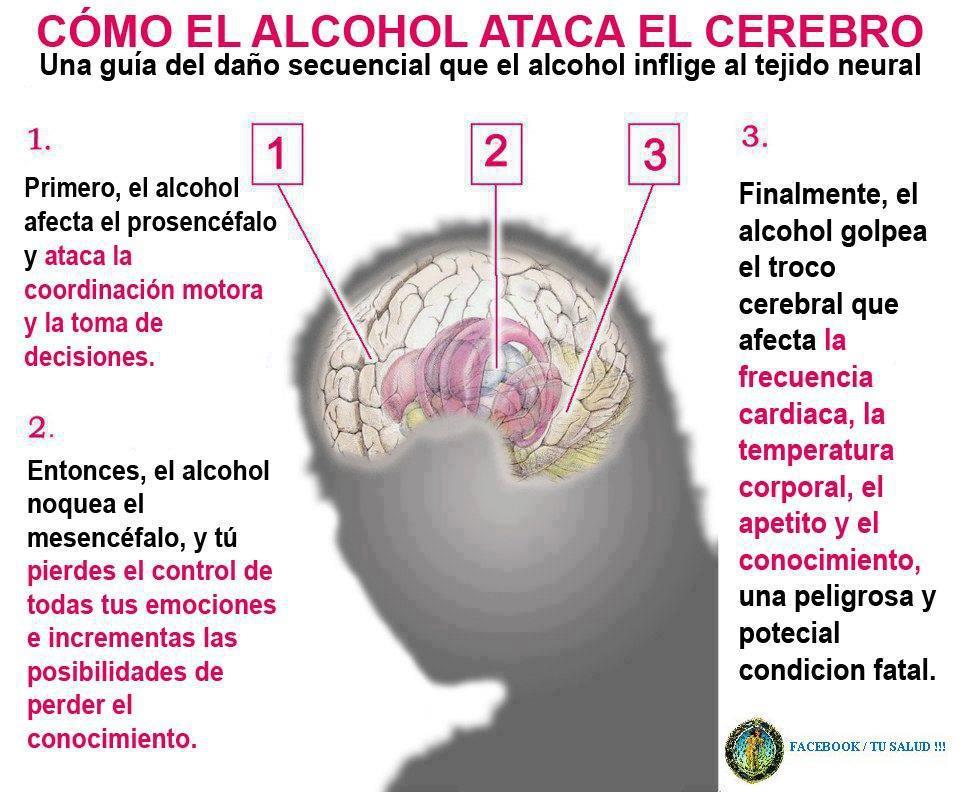 Como se librará del alcoholismo por los medios públicos