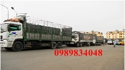 Chở hàng thuê bằng xe tải