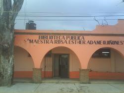 "Biblioteca Pública ""Maestra Rosa Esther Adame Quiñones"""